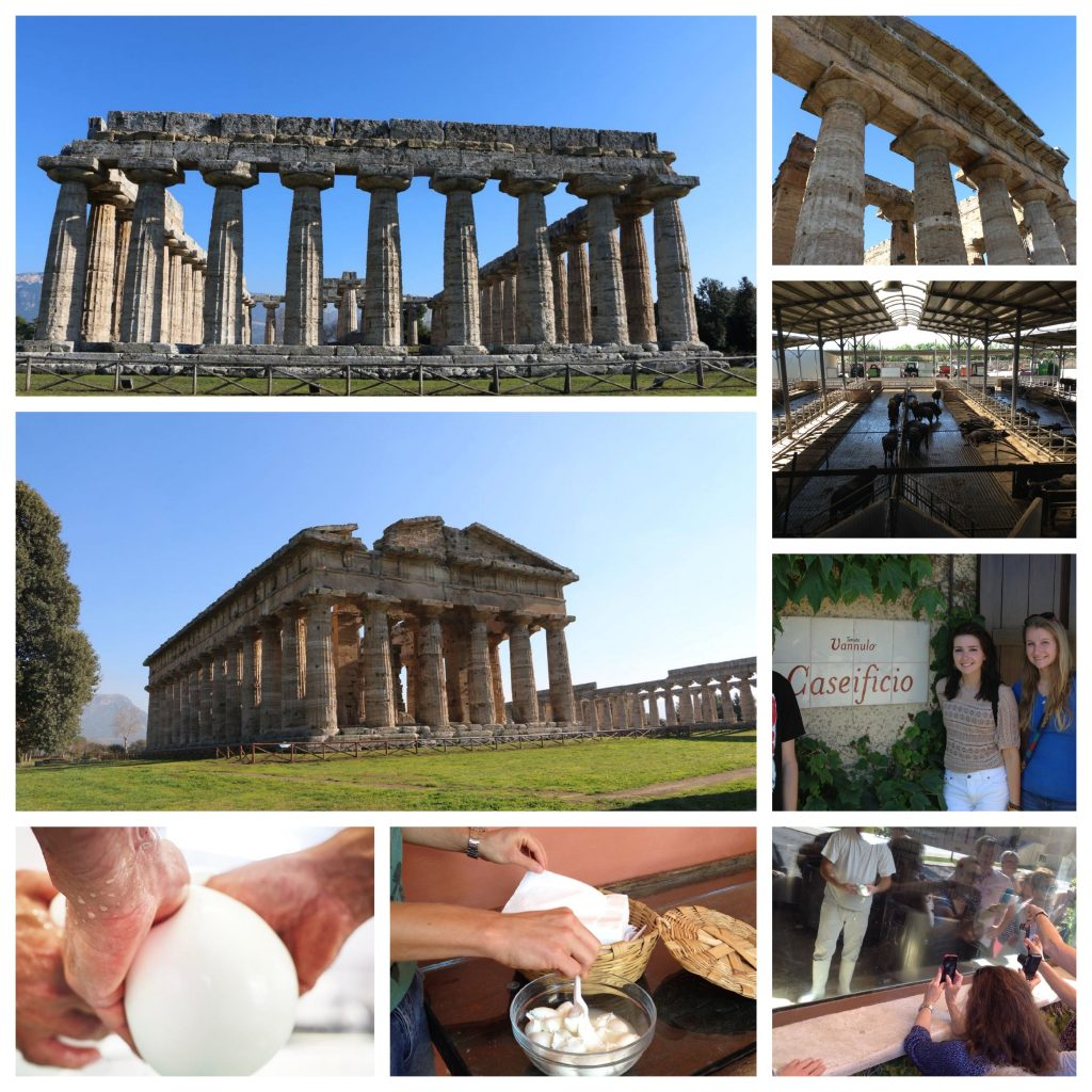 Paestum, Temples and Buffalo Mozzarella